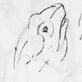 Beatrix Potter, several studies of frogs' heads