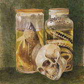 Bertram Potter, 'Still life study'