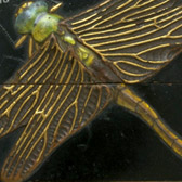 Inro with dragonfly design