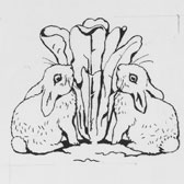 Beatrix Potter, Preliminary design for the title-page of The Tale of the Flopsy Bunnies