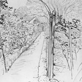 Beatrix Potter, Sketch of a trellis in the garden at Gwaynynog