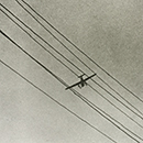 Ilse Bing, Telegraph wires with airplane, Frankfurt am Main