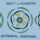 Christopher Dresser, 'Botanical lecture diagram'