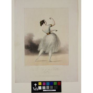 Print - The Pet of the Ballet. / No. 3.