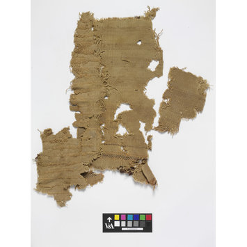 Carpet fragment - The Stein Collection