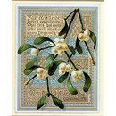 With Christmas Greetings (Fair Mistletoe) (Greetings card)