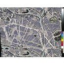 Map of Paris (Dress fabric)