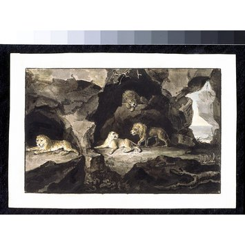 Watercolour - Lions and Lionesses; The Cave of Lions
