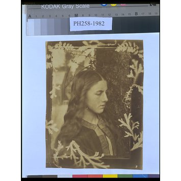 Photograph - Kate Dore with Photogram Frame of Ferns