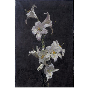 Painting - White Lilies; Branche de Lys; Madonna lily, Lilium candidum