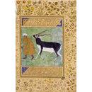 Indian black buck (Album page)