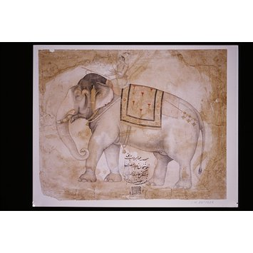 Painting - A Mughal prince riding the elephant Mahabir Deb