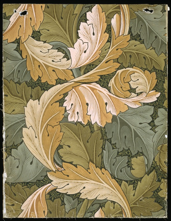 Acanthus Morris William V Amp A Search The Collections