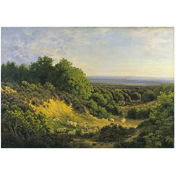 Oil painting - The Evening Sun: View on Ewhurst Hill, near Guildford