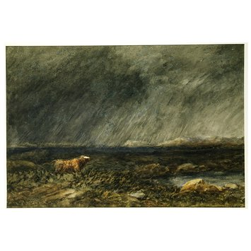 Watercolour - The Challenge: A Bull in a Storm on a Moor