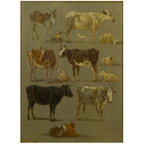 Studies of Animals: Cows and Oxen, Sheep and a Donkey (Oil painting)