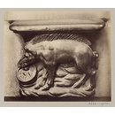 Church of SS Gervais et Protais, Miserere Seat (Pig), XVI Century', Paris, France; Old Paris (Photograph)