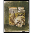 Still life study of a pickled fish and snake with a human skull (drawing)