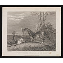 A Thorough-Bred one Falling at his Fence (Print)