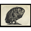 Owl (Print)