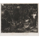 A Dell, Helmingham Park, Suffolk (Print)