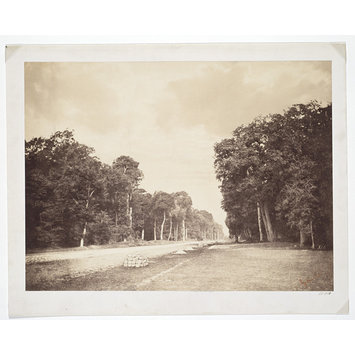 Photograph - The Road to Chailly, Forest of Fontainebleau