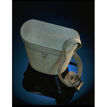 Gas mask bag with gas mask