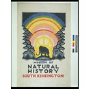 Museum of Natural History, South Kensington (Poster)