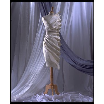 Evening dress - Bird's Wing