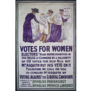 Votes for Women (Poster)