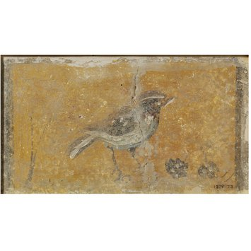 Fresco fragment - Bird standing on the ground with fruit