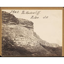 The Undercliff.  Niton.  I.W. (Photograph)