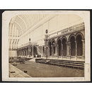 Interior, conservatory, Royal Horticultural Gardens, South Kensington (Photograph)