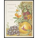 Flowers and Fruit from Bible Lands (Card)