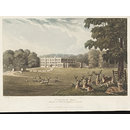 View of Trentham Hall, Staffordshire, the seat of the Marquis of Stafford (Aquatint)