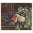 Still life of grapes and peaches on a sideboard (drawing)