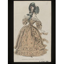 Morning Visiting Dress (Fashion plate)