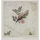 Design for a chintz