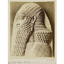 Relief of head of Assyrian officer. Paris: Louvre (Photograph)