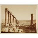 Jordan, Gerasa, View of the street from the north end (colonnades) (Photograph)