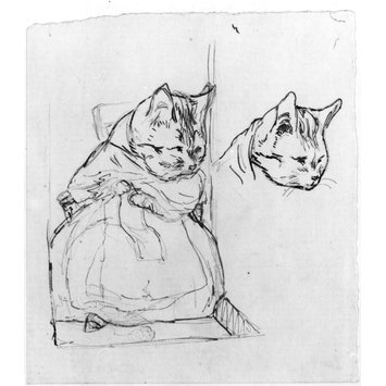 drawing - Drawing of a cat knitting and sketch of a cat's head