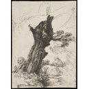 St Jerome beside a pollard willow (print)